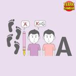 Kunci Jawaban Tebak Gambar Level 60 JEJAK PENGEMBARA