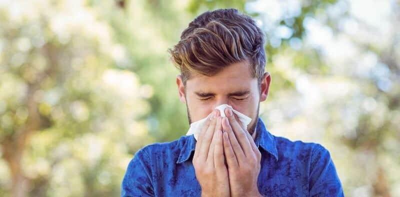 4 Antihistamin Alami Terbaik untuk Mengatasi Alergi