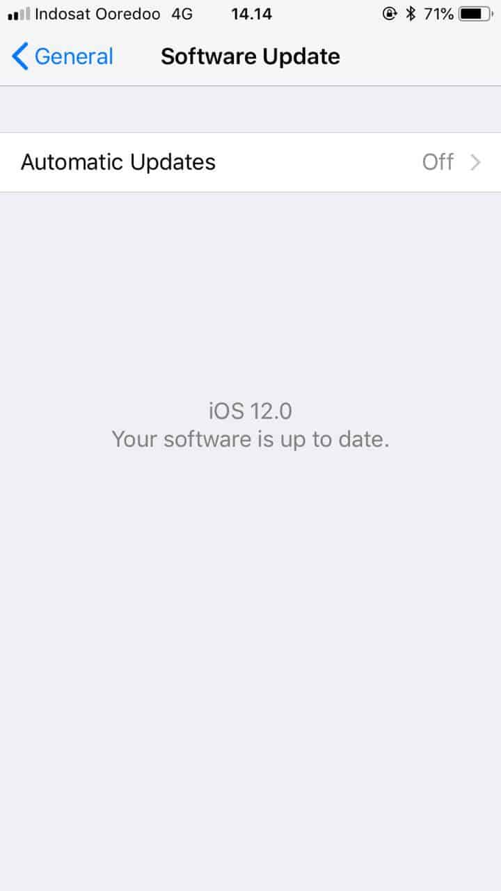 iPhone iOS 12 Beta Developer