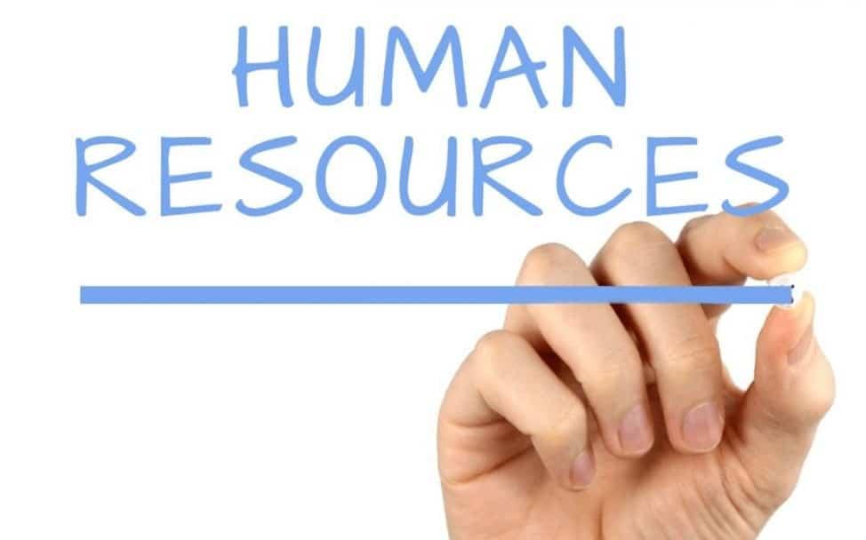 Inilah Human Resource Database yang Sempurna Untuk Digunakan